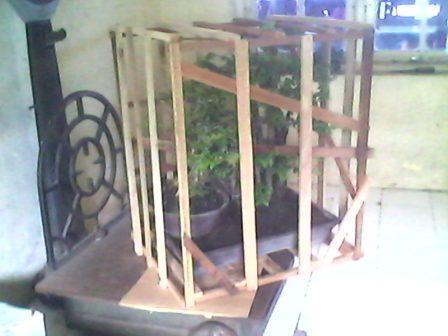 Box Bonsai
